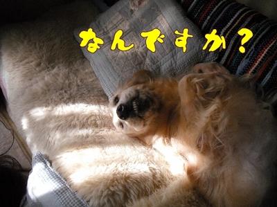 1お天気4.jpg