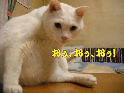 1お天気6.jpg