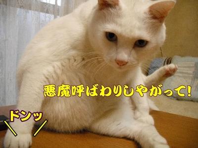 1お天気7.jpg