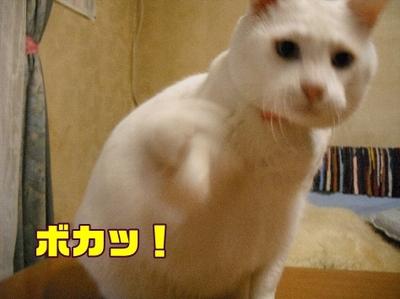 1お天気9.jpg