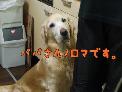 1そーめん03.jpg