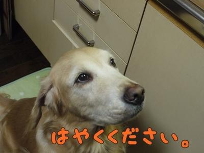 1そーめん04.jpg