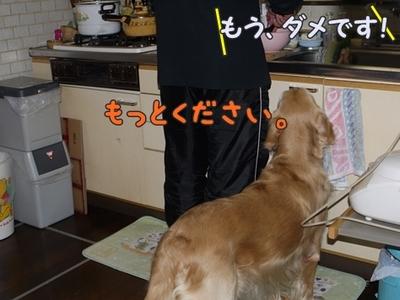 1そーめん13.jpg