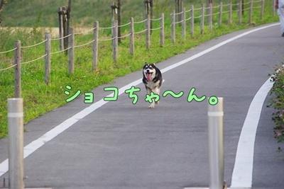 1プーちゃん20.jpg