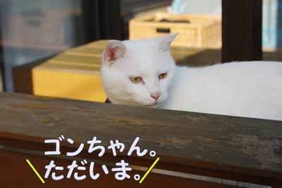 1プーちゃん24.jpg