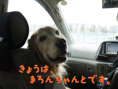 1永野川01.jpg