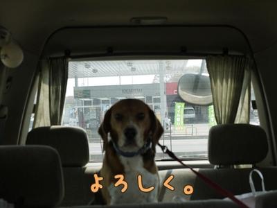 1永野川02.jpg