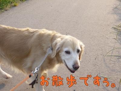 1解禁01.jpg