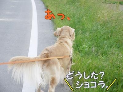 1解禁02.jpg