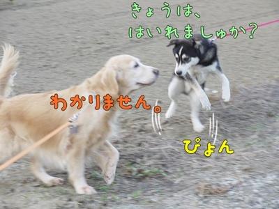 1解禁08.jpg