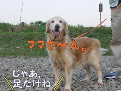 1解禁11.jpg
