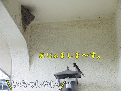 1扇風機03.jpg