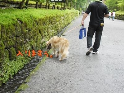 1東照宮09.jpg