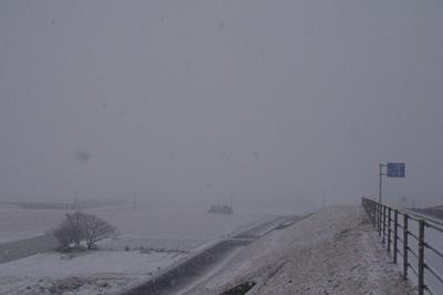 1雪02.jpg