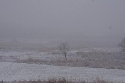 1雪03.jpg
