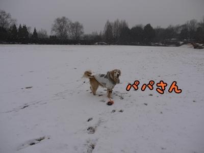 1雪遊び05.jpg