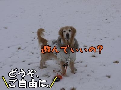 1雪遊び06.jpg