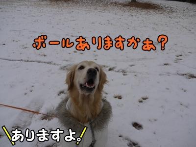 1雪遊び11.jpg