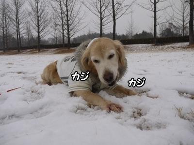1雪遊び12.jpg