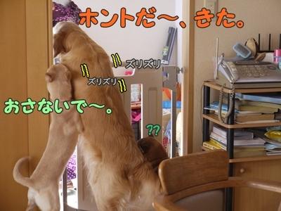 2さくら家04.jpg