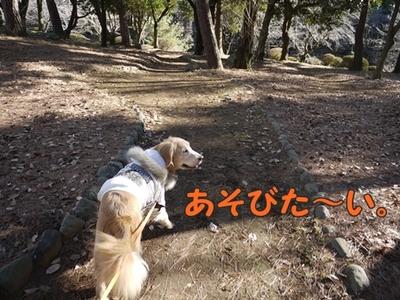 1太鼓橋03.jpg