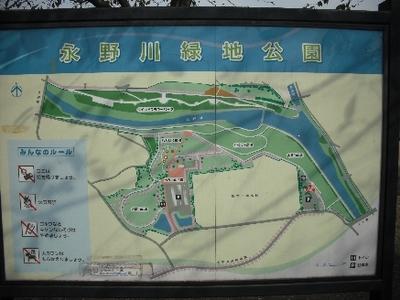 永野川公園1.jpg
