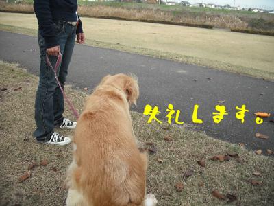 永野川公園2.jpg
