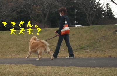 永野川公園3.jpg