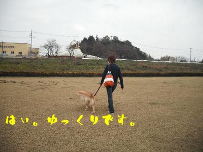 永野川公園4.jpg