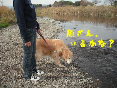 永野川公園90.jpg