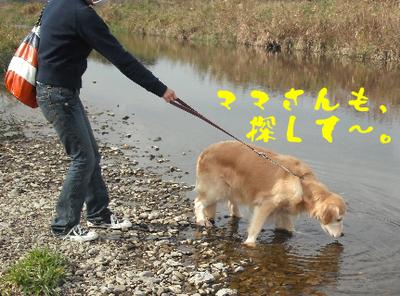 永野川公園91.jpg