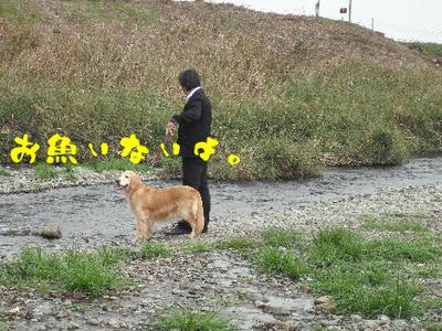 永野川公園95.jpg