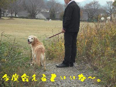 永野川公園96jpg.jpg