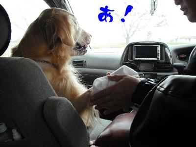永野川公園998jpg.jpg