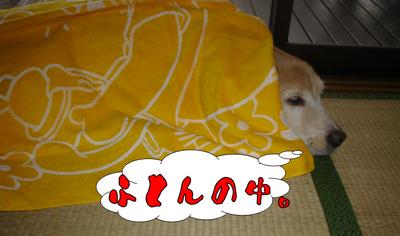 台風5.jpg