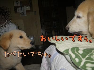 1ミッキーちゃん10.jpg